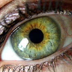 2017-01-04-green-eyes-240-pixels